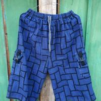 celana pendek cargo kanvas biru