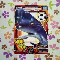 strong animal kaiser normal sperm whale soccer ball s2