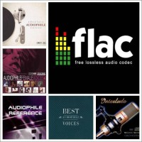 Kompilasi Lagu Audiophile Format Flac & FDD Sandisk 16GB