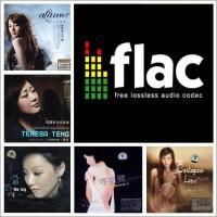 Mandarin Audiophile Format Flac & FDD Sandisk 16GB - lagu
