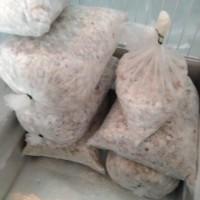 Daging Ayam Cincang / Potong Dadu untuk Mie Ayam / Sate / Restoran