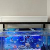 top filter talang filter atas aquarium 80cm dan TUTUP