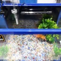 Aquarium mini set