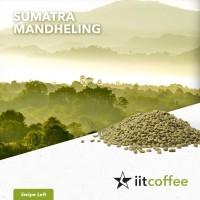Arabica Green Beans - Sumatra Mandheling 1Kg