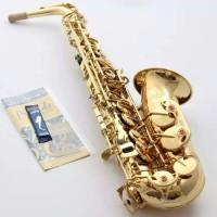 saxophone alto selmer mark v