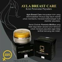 cream ayla breast care cream payudara