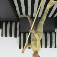 Baju Kostum Renang Mermaid Cowok Kostum Katak SET NEW FL home and tool