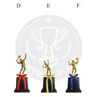 Piala Murah Badminton Bulu Tangkis Voli