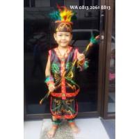 Daerah Dayak Anak Wanita PAUD TK Baju Adat Karnaval Kostum Tari Tradis