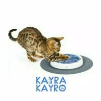 Catit Senses Scratch Pad Cat Toy - Mainan Kucing