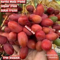Kurma Muda Segar Fresh Bukan Frozen Merah 500g