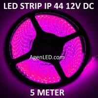 Lampu LED STRIP 3528 SMD 2835 IP44 IP 44 outdoor DC ledstrip ungu PINK