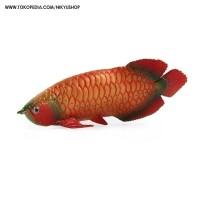 Mainan Edukasi Pajangan Koleksi Hewan Ikan Arwana Arowana Red