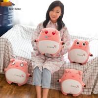 New Mainan Boneka Bantal Babi dengan Lubang Penghangat Tangan
