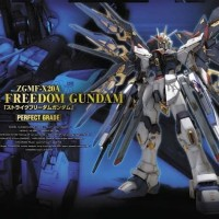PG 1/60 Strike Freedom Gundam Bandai Perfect Grade SALE