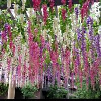 bunga hias/tanaman hias/bunga gantung/dekorasi pelaminan/dekorasi/cafe
