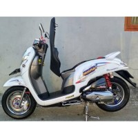 Striping transparan scoopy radial concept
