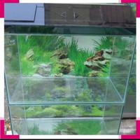 akuarium kaca 60 x 30 x 35