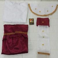 Baju adat lampung anak perempuan baju kartinian baju karnaval