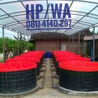 Kolam terpal bulat bioflok - Bahan Terpal virgin HDPE Korea diameter 3