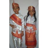 Baju adat anak Prov-Bali - Harga sepasang ( LK & PR ) - 5-6 tahun