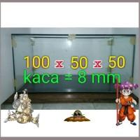 Aquarium 100x50x50 Kaca 8 mm