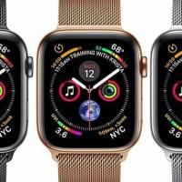 Apple Watch Series4 44Mm Hawaolshop88