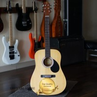 Gitar Akustik Electrik Samick Greg Bennet D-310N Original (Tas&Tunner)