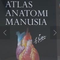 buku atlas anatomi manusia frank h netter md bewarna full