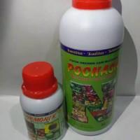 paket pupuk buah organik nasa poc nasa & hormonik