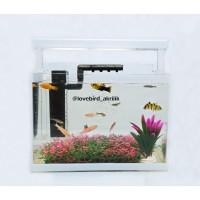 Aquarium Akrilik, Mini Aquarium, Aquarium Mini, Aquarium cupang