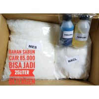Deterjen Cair Ramah Lingkungan Bahan MES paket   SB pemula