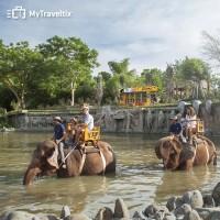 Tiket Masuk Bali Zoo - Indonesia Citizen (Tiket Dewasa)