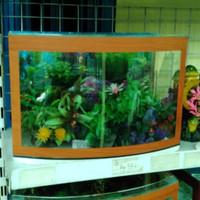 Promo aquarium kaca depan cembung P 38 x L 20 x T 26 Type S Limited