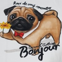 Kaos /T shirt/Baju/Kaos gambar hewan/Kaos gambar anjing PUG bonjour