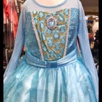 Baju Dress Gaun Pesta Anak Cewe - Kostum Cinderela Elsa Ana Frozen