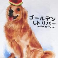 Kaos /T shirt/Baju/Kaos gambar hewan/Kaos gambar anjing GOLDEN buah