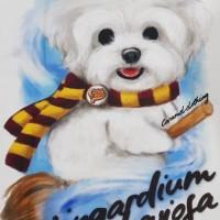 Kaos /T shirt/Baju/Kaos gambar hewan/Kaos gambar anjing MALTESE porter