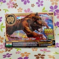 animal kaiser super gold rare bengal tiger
