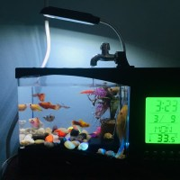 Aquarium Mini USB Desktop Jam Alarm LED Display Aerator Akuarium Mini