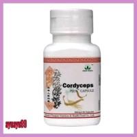 Terbaru Cordyceps Plus Green World