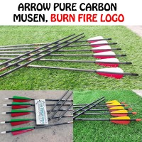 Arrow Pure Carbon Musen Vanes Bulu Kalkun Import