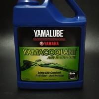 yamacoolant/air radiator yamaha
