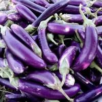 Terong ungu 500g sayuran hijau segar sehat harga grosir murah