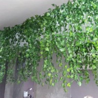 Daun rambat anggur sintetis - dekorasi ruangan - artificial