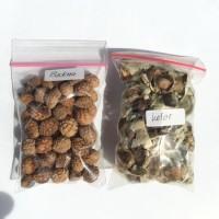 Benih Bidara Arab dan Kelor 25 gram GRADE A
