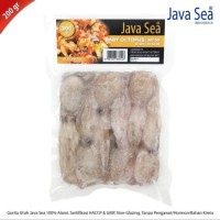 Java sea baby octopus / jual gurita utuh 30-50gr per ekor / gurita