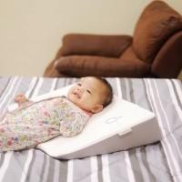 Dooglee Wedge Pillow bantal bayi santai after nursing menyusui - pink