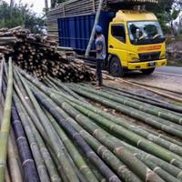 Jual Bambu steger 8-10cm