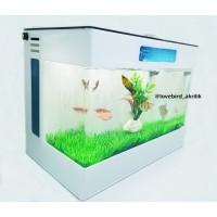 Aquarium mini, Aquarium Akrilik, Aquarium Cupang, Aquarium Acrylic
